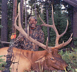 Montana Elk Hunting - Bow Hunter with a 6x6 Bull Elk scoring 348 Pope & Young.