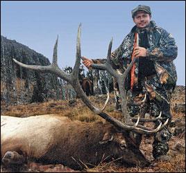 Bull Elk scoring 346 B&C
