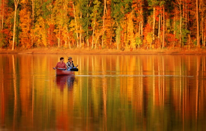 Image result for fishing fall
