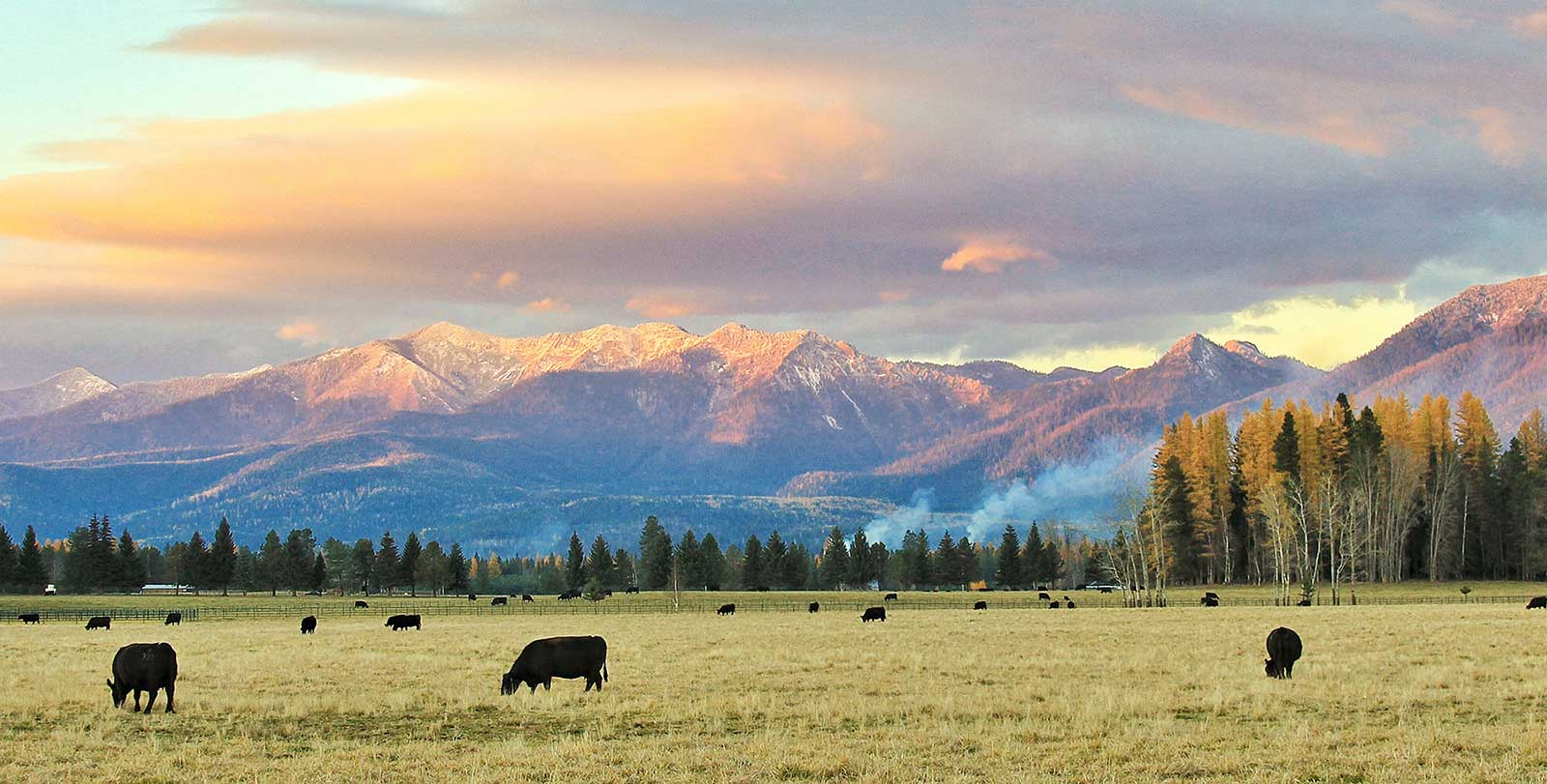 Image result for photo of montana