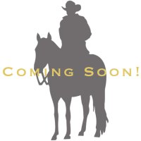 Classic Triple Concho Drop Earrings | Montana Silversmiths
