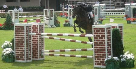 Enrique_Gonzalez_Young_Horses