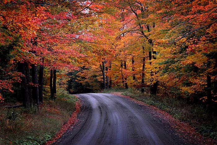 Upstate New York Fall Hd Wallpaper Dual Sport Motorcycling Photos In And Around The