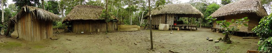 native-village-of-chipitiere-in-the-cultural-zone-of-manu-national-park-peru