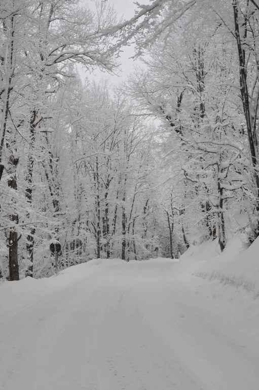 L'arte del nevicare.