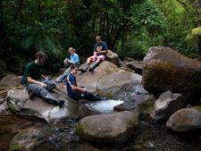 Litter release - Rio San Lorencito - Upstream 4-5-2009 6-53-34 AM
