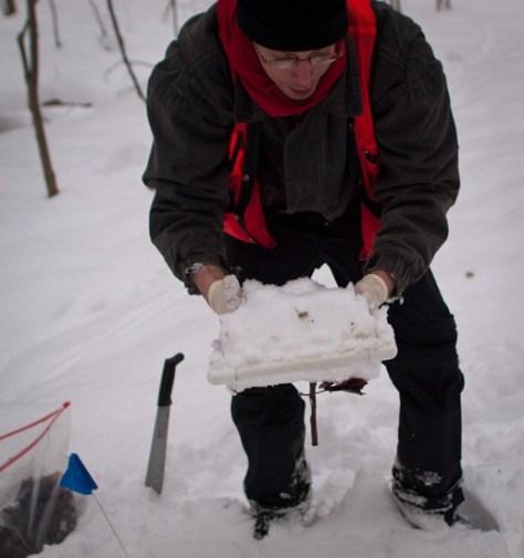 Peter Euclide's winter decomposition - 12.22.2010 - 13.38.18-1