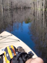 Camping and Kayaking at George Smith State Park - 03.20.2015 - 14.49.29