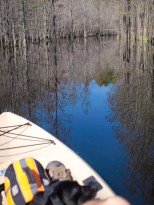 Camping and Kayaking at George Smith State Park - 03.20.2015 - 14.49.33