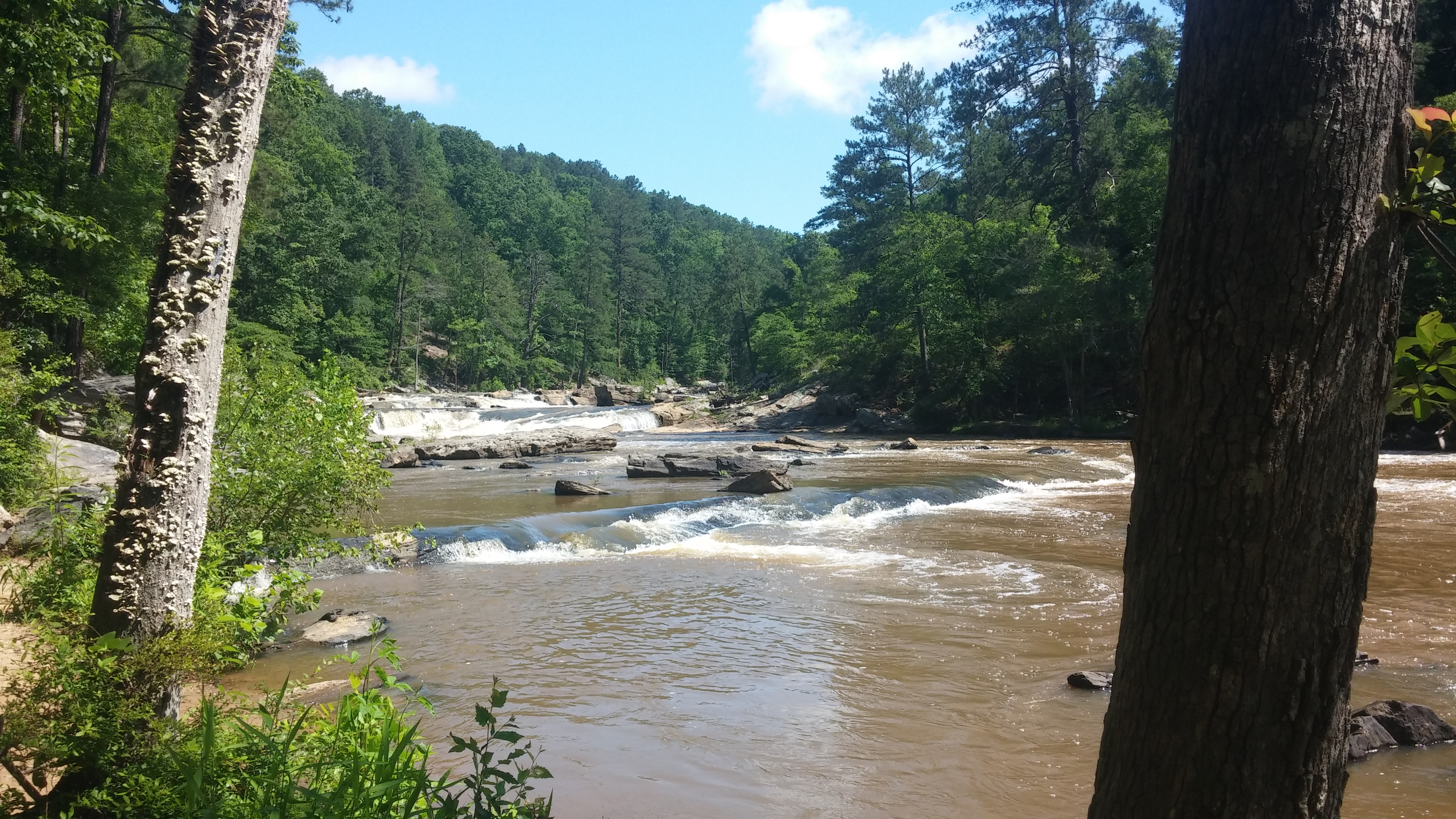 Sweetwater Creek State Park | Montegraphia