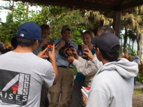 Birding at Finca Cantaros - 20130717 - 20