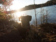 Camping at Mistletoe State Park - 11.23.2015 - 06.46.09