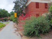 Armstrong campus - 05.19.2016 - 09.05.41
