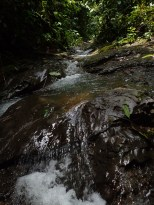 West Branch of Rio Java - 07.17.2016 - 11.09.07