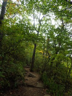 hurricane-matthew-appalachian-trail-section-hike-10-07-2016-12-19-34