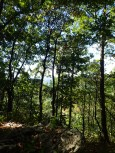 hurricane-matthew-appalachian-trail-section-hike-10-08-2016-09-50-42