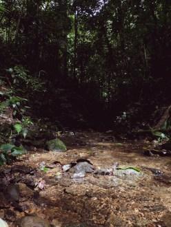 20180704 - Quebrada Cerro 003