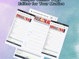 Get Working Free Mp3 Tags Editor With Track Editor for WordPress Sites
