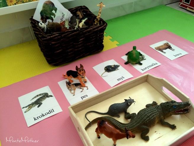 Montessori priradovanie - karticky zvieratiek