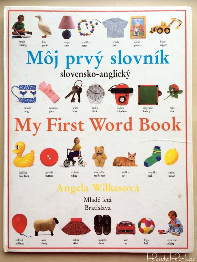 Môj prvý slovník