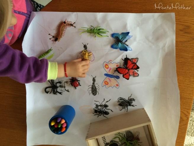 miniatury safari hmyz 1 MonteMother