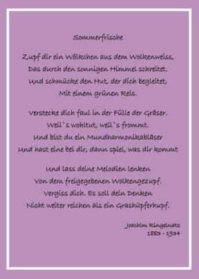 2015_07_17-Zitate-Sommerbrief-1
