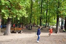 montessori-grundschule-hangelsberg_tag-der-offenen-tuer-2016_66
