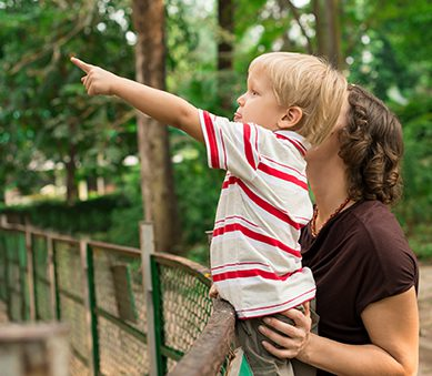 """Dear Cathie: Setting Limits and """"Following the Child"""""""
