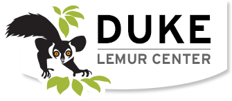 Duke Lemur Center logo has a lemur and green leaves with Duke Lemur Center
