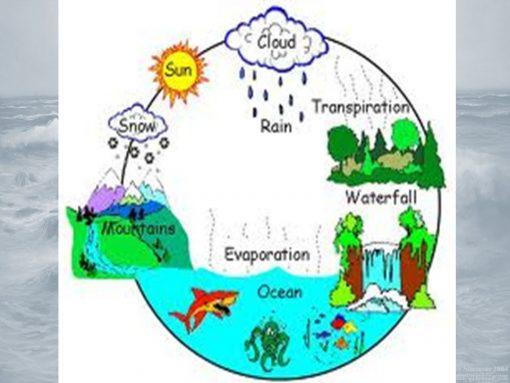 Su Döngüsü Montessori Etkinlikleri