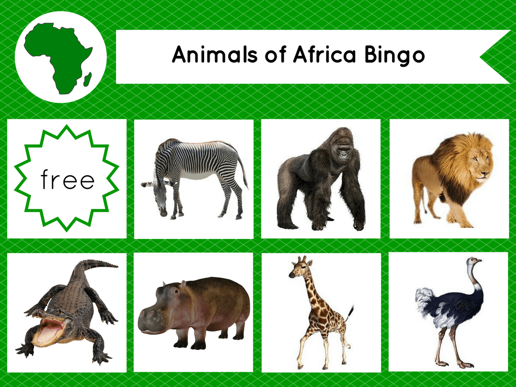 Montessori Inspired Animals Of The Continents Bingo Printable
