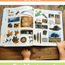 Our Favourite Books For Montessori Toddlers Montessori