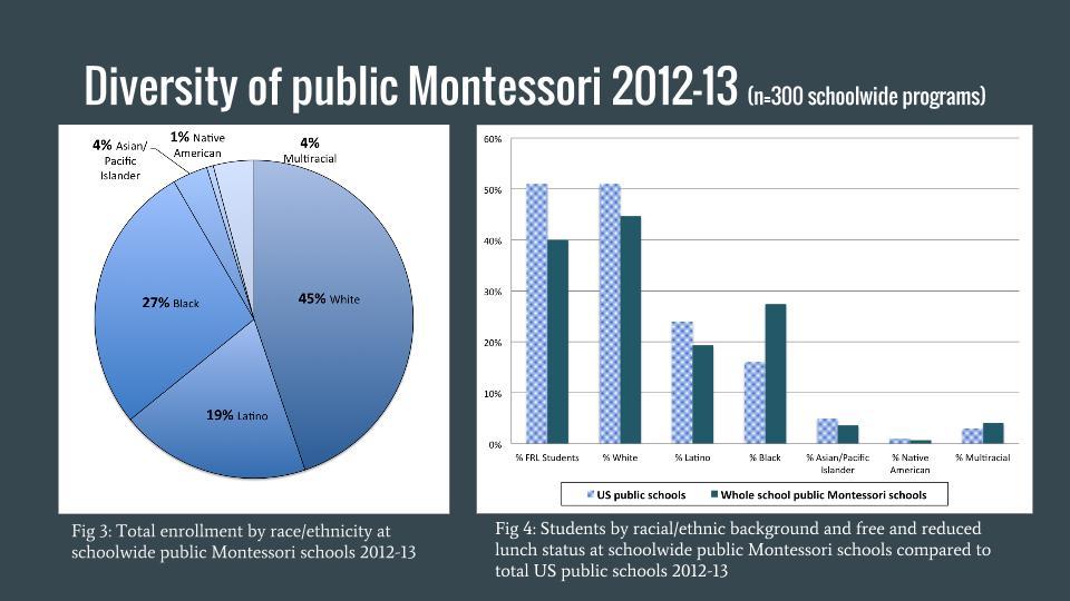Diversity in Public Montessori