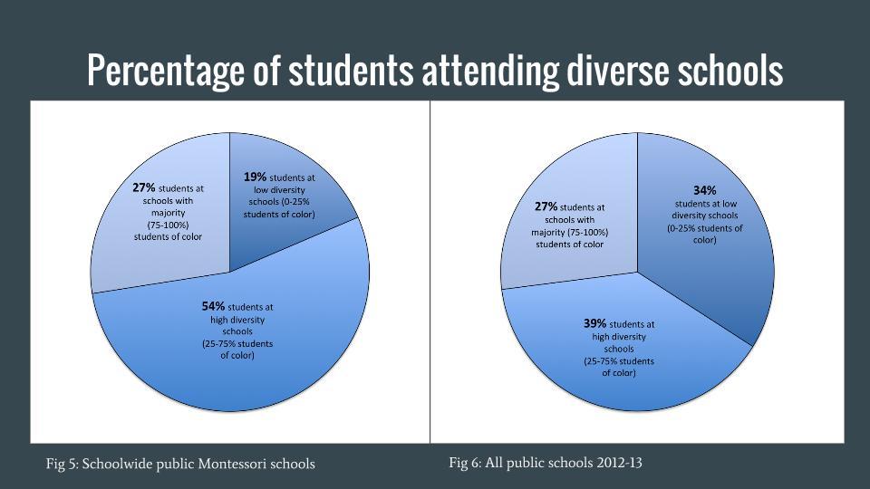 Diversity of Public Montessori