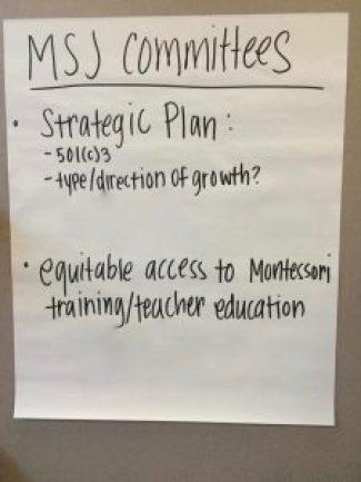 MSJ committees 1