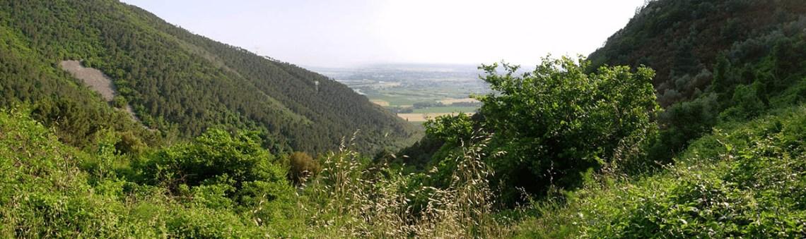 valle delle fonti