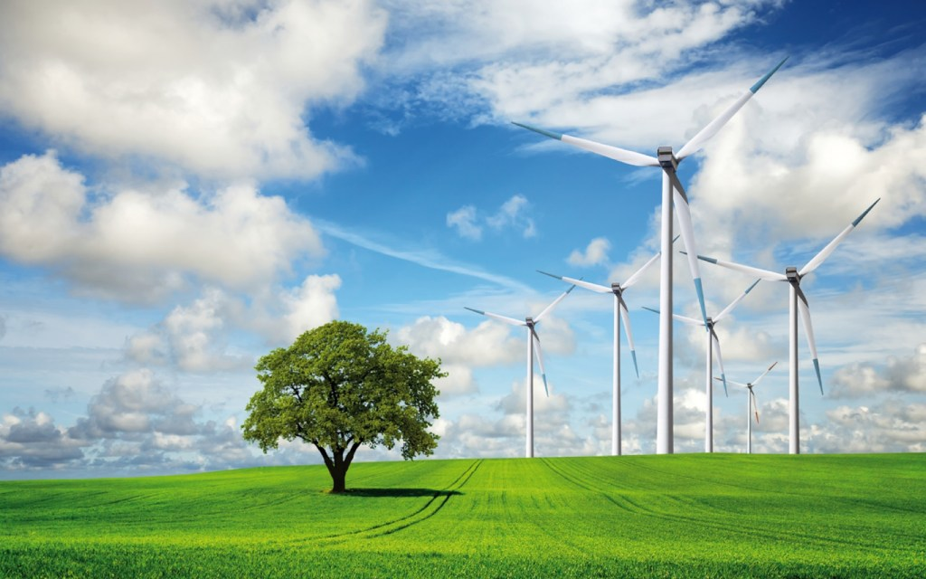 Ecofuel cleantech accelerator forges ahead with new cohort, fund