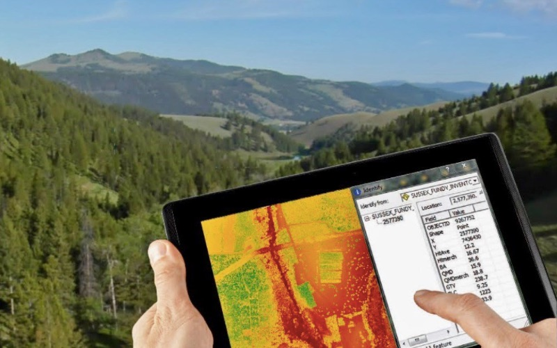 Novacap invests in expansion of aerial surveyor Leading Edge Geomatics