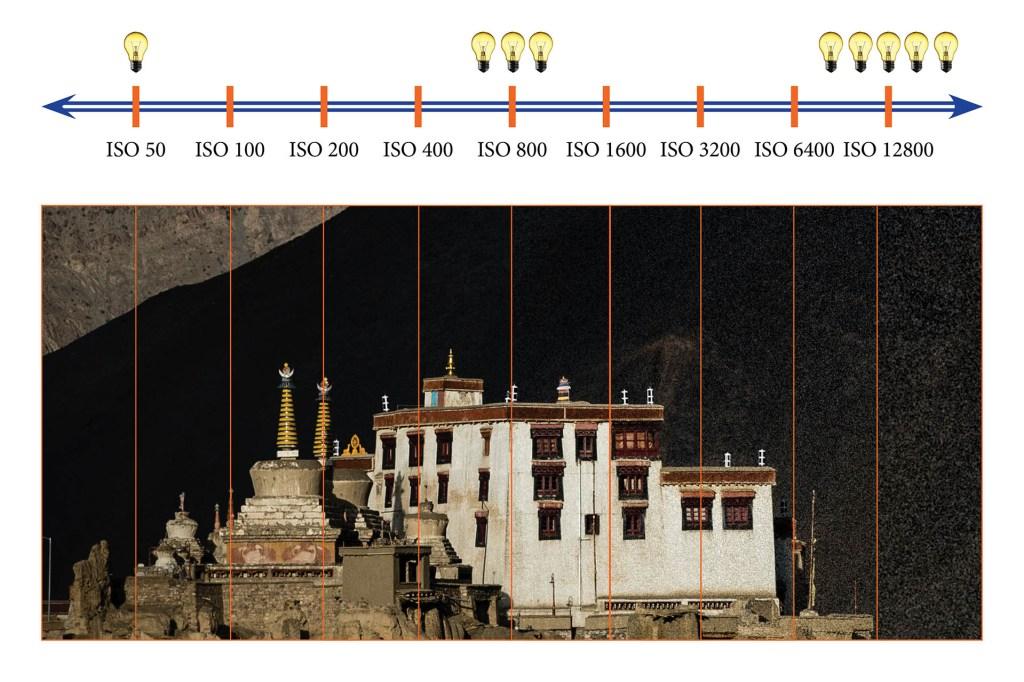 L'échelle de sensibilité ISO et bruit numérique