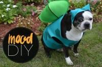 Mood DIY: Bulbasaur Dog Halloween Costume