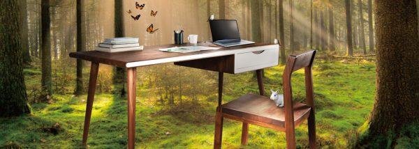 【傢櫥Q1細木書桌】