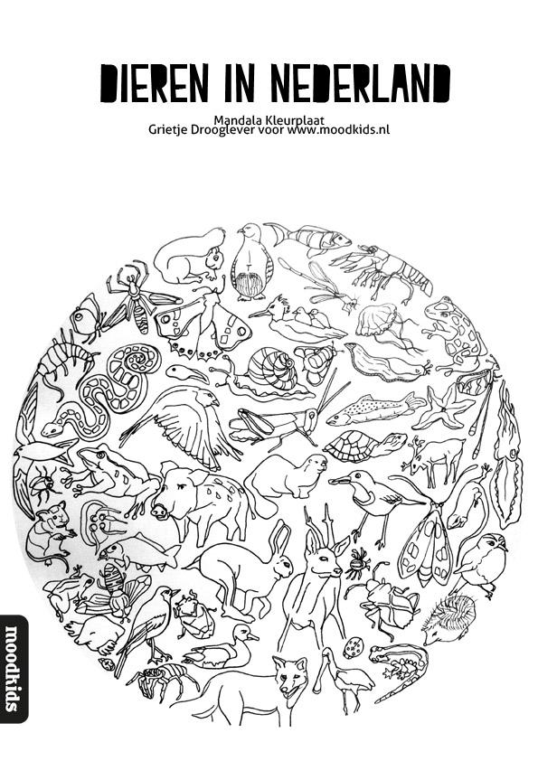 Mandala dieren kleurplaat gratis download