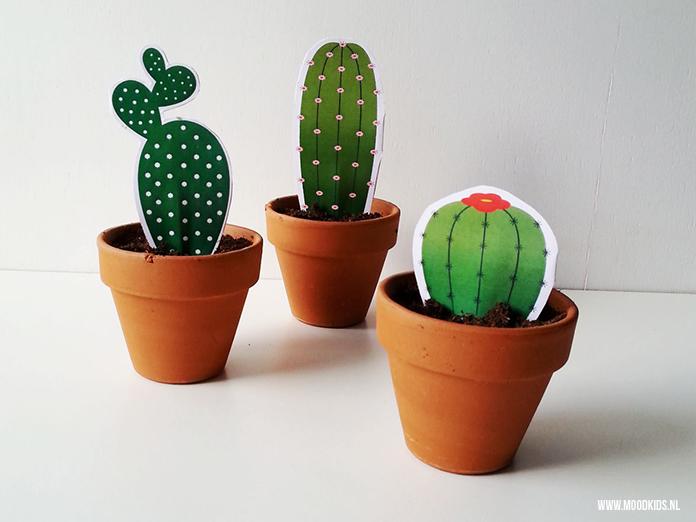 Mini cactus van papier maak je zelf met deze gratis printable