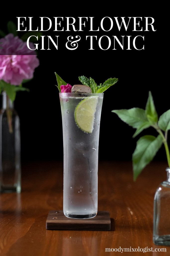 botanical-elderflower-and-herb-gin-and-tonic-recipe-8353477