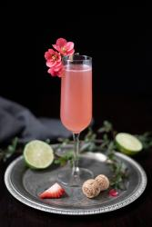 pink cocktail in a champagne flute