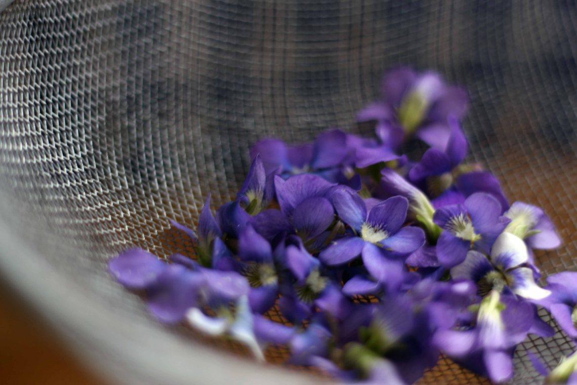 washing violets