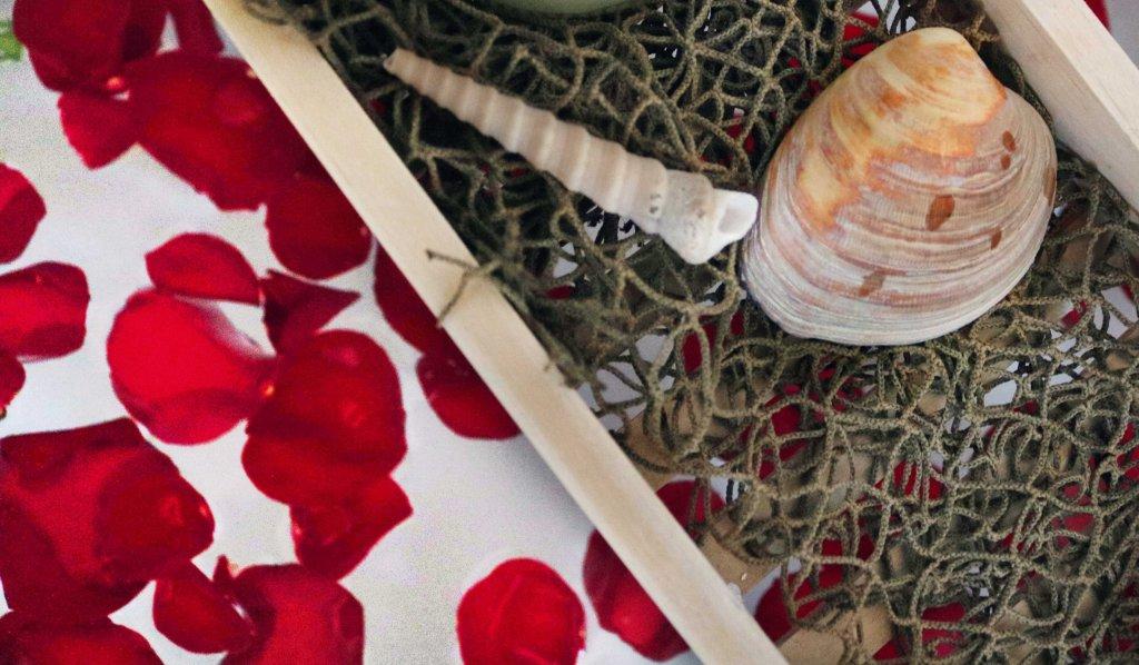 Seashells for Aphrodite bath ritual.