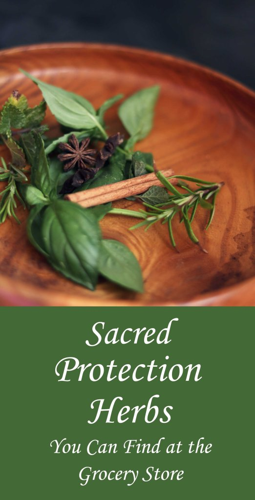 9 protection herbs to keep on hand in your magical cabinet.