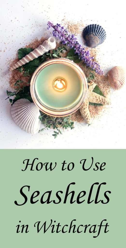 How to use seashells in witchcraft. Love all of these!