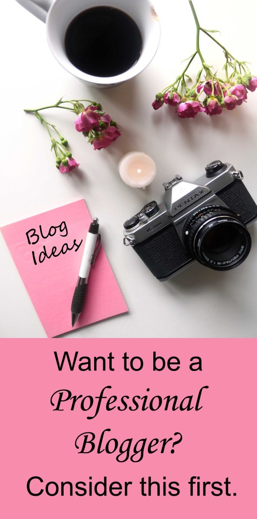 Before you take the leap and become a professional blogger, consider this first.